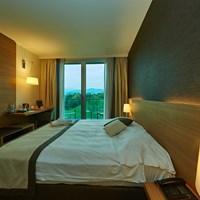 Hotel Como Con Camere Business